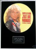 "DAVID LEE ROTH-Framed 12"" Pic Disc-JUST LIKE PARADISE"